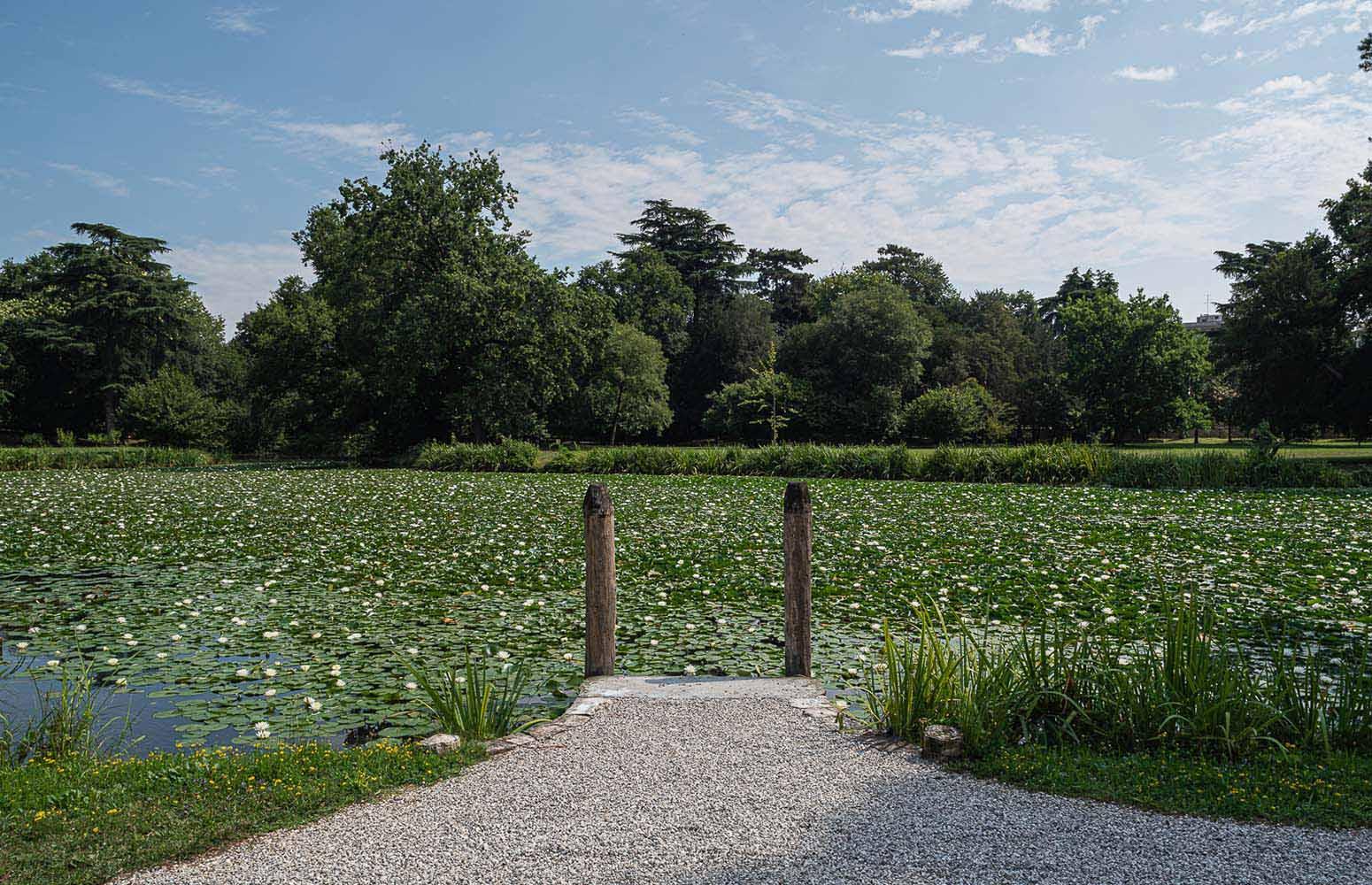 Laghetto del Parco di Villa Bolasco