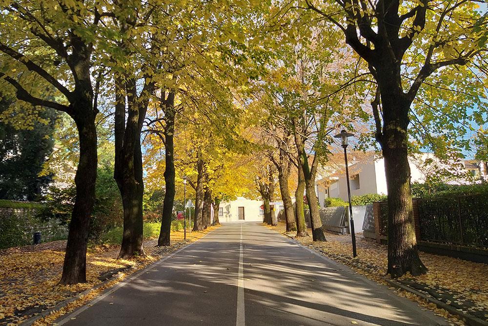 Viale della stazione Castelfranco Veneto